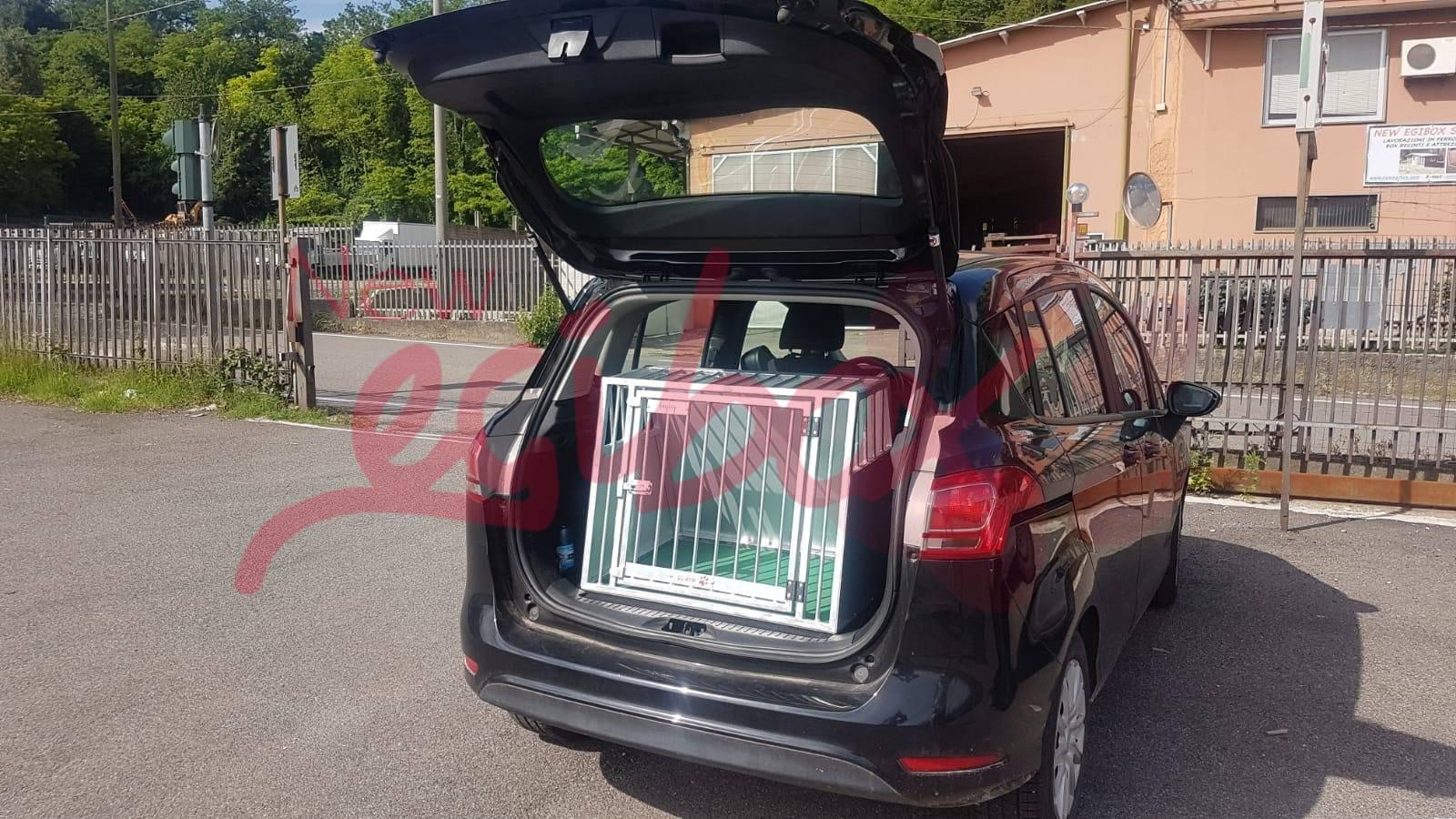 Trasportini auto per cani